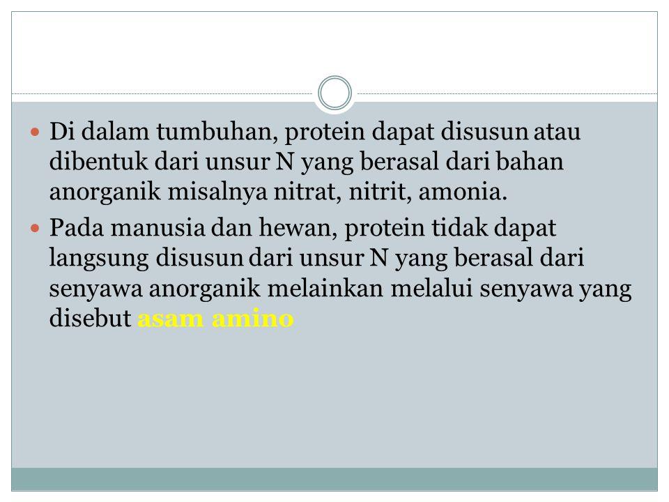 Asam-asam amino penyusun protein Asam amino adalah senyawa organik yang mengandung gugus amino (-NH2) dan gugus karboksil.