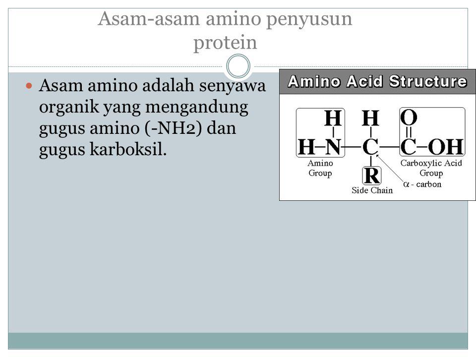 Tiga tangan dari atom C selalu mengikat gugus yang sama yang selalu dipunyai oleh semua asam amino.