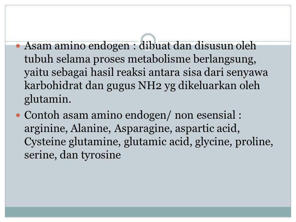 Asam amino Eksogen : golongan asam amino yang tidak dapat diproduksi oleh tubuh.