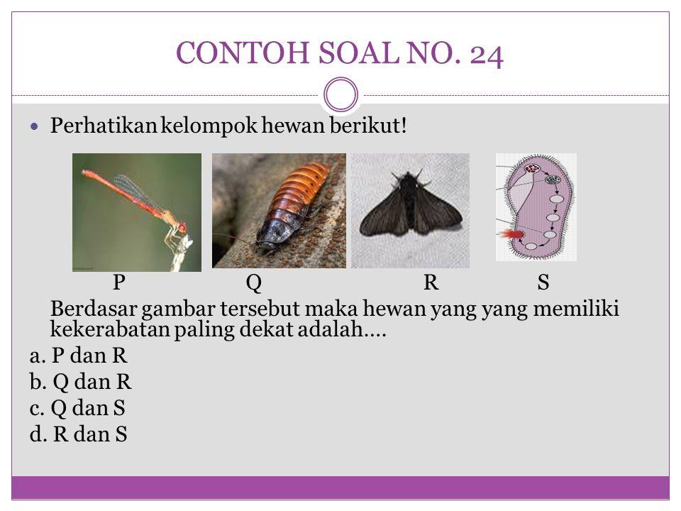 CONTOH SOAL NO. 24 Perhatikan kelompok hewan berikut! P Q R S Berdasar gambar tersebut maka hewan yang yang memiliki kekerabatan paling dekat adalah….