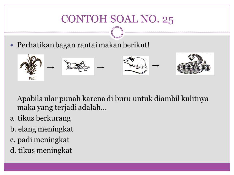 CONTOH SOAL NO. 25 Perhatikan bagan rantai makan berikut! Apabila ular punah karena di buru untuk diambil kulitnya maka yang terjadi adalah… a. tikus