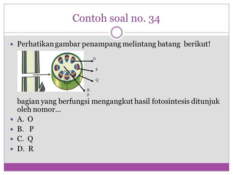 Contoh soal no. 34 Perhatikan gambar penampang melintang batang berikut! bagian yang berfungsi mengangkut hasil fotosintesis ditunjuk oleh nomor... A.