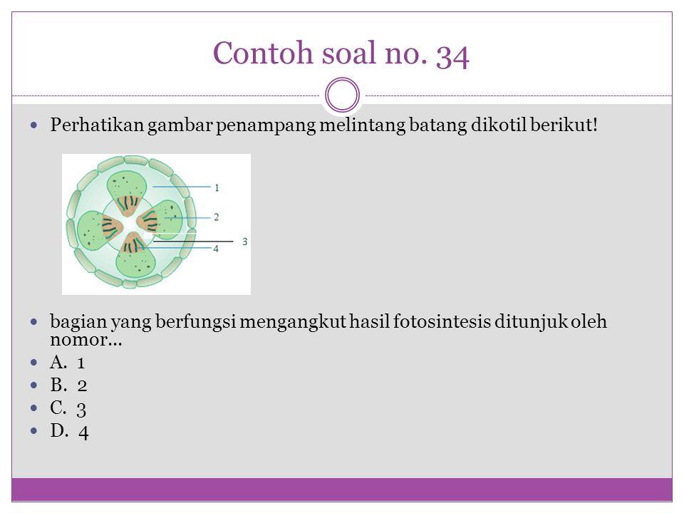 Contoh soal no. 34 Perhatikan gambar penampang melintang batang dikotil berikut! bagian yang berfungsi mengangkut hasil fotosintesis ditunjuk oleh nom