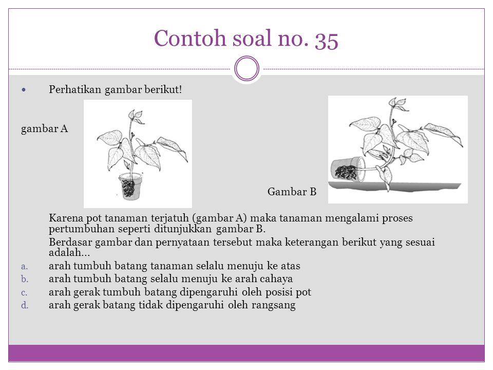 Contoh soal no. 35 Perhatikan gambar berikut! gambar A Gambar B Karena pot tanaman terjatuh (gambar A) maka tanaman mengalami proses pertumbuhan seper