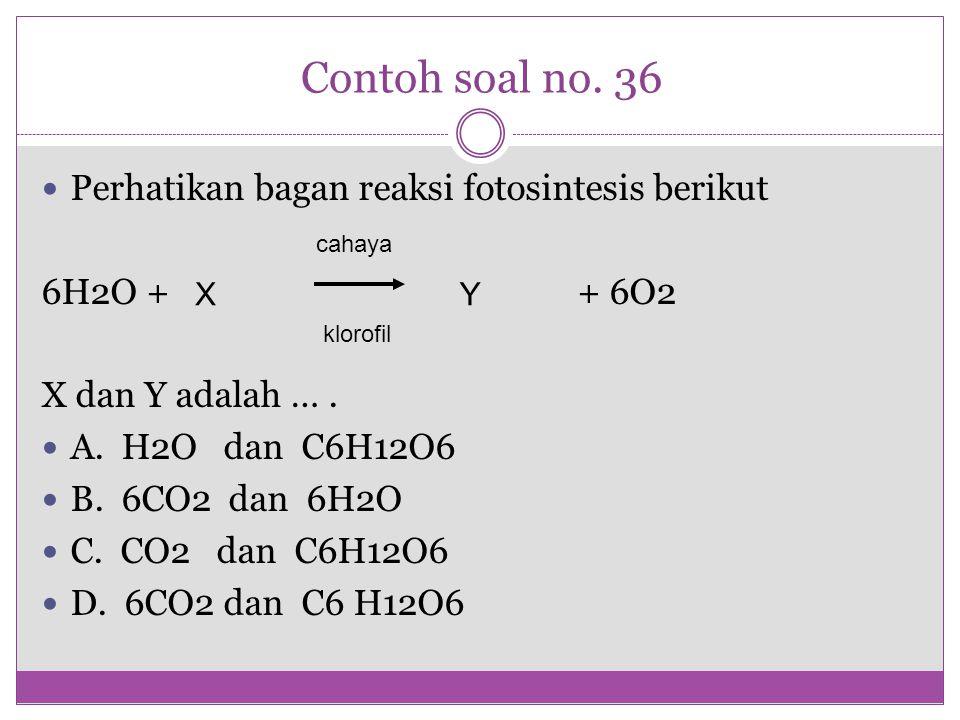 Contoh soal no. 36 Perhatikan bagan reaksi fotosintesis berikut 6H2O + + 6O2 X dan Y adalah …. A. H2O dan C6H12O6 B. 6CO2 dan 6H2O C. CO2 dan C6H12O6