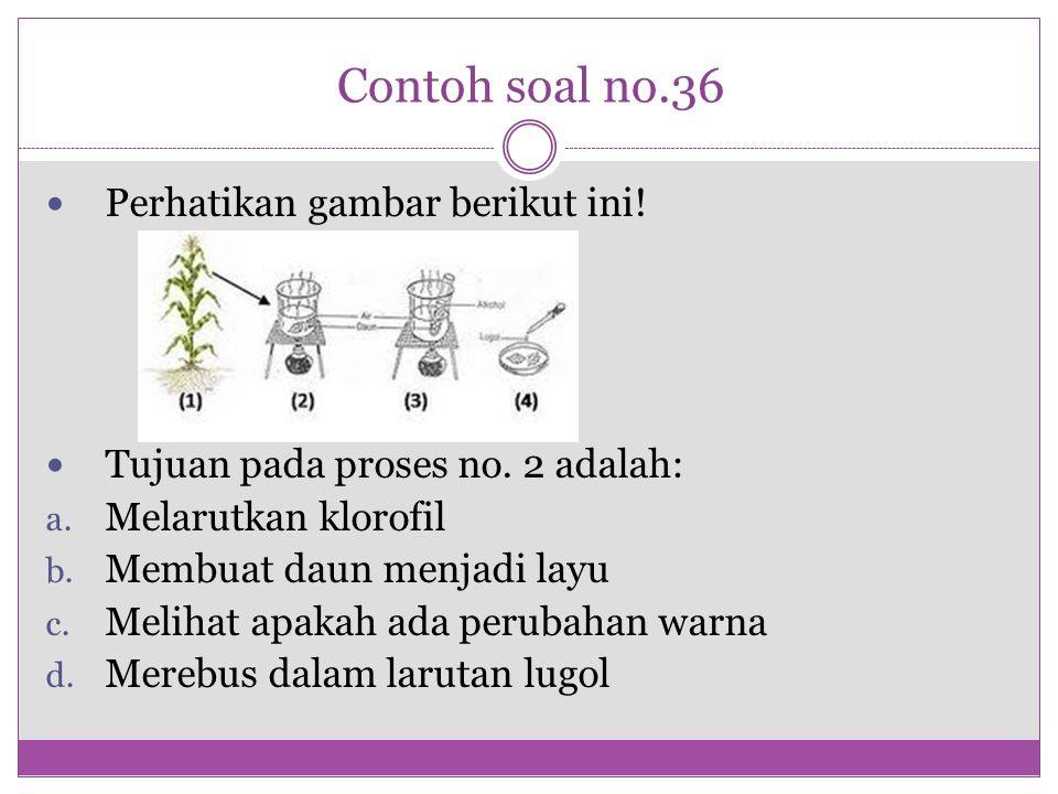 Contoh soal no.36 Perhatikan gambar berikut ini! Tujuan pada proses no. 2 adalah: a. Melarutkan klorofil b. Membuat daun menjadi layu c. Melihat apaka