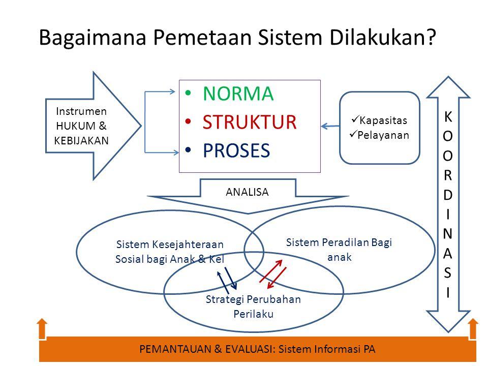 Bagaimana Pemetaan Sistem Dilakukan? NORMA STRUKTUR PROSES Instrumen HUKUM & KEBIJAKAN Kapasitas Pelayanan ANALISA Strategi Perubahan Perilaku Sistem