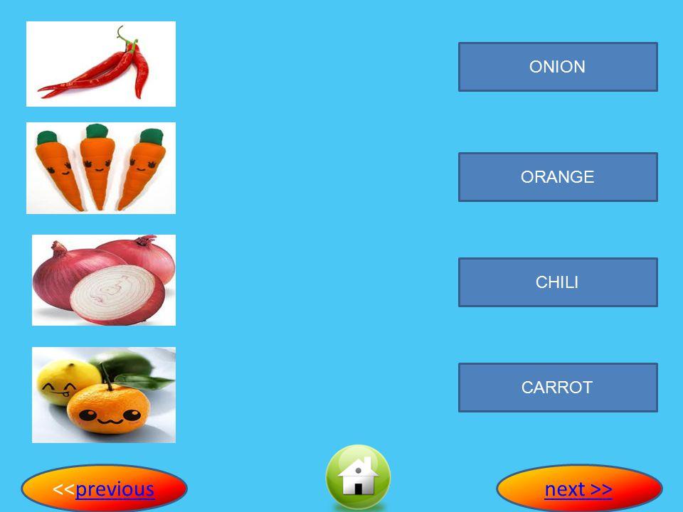 ONION ORANGE CHILI CARROT <<previouspreviousnext >>