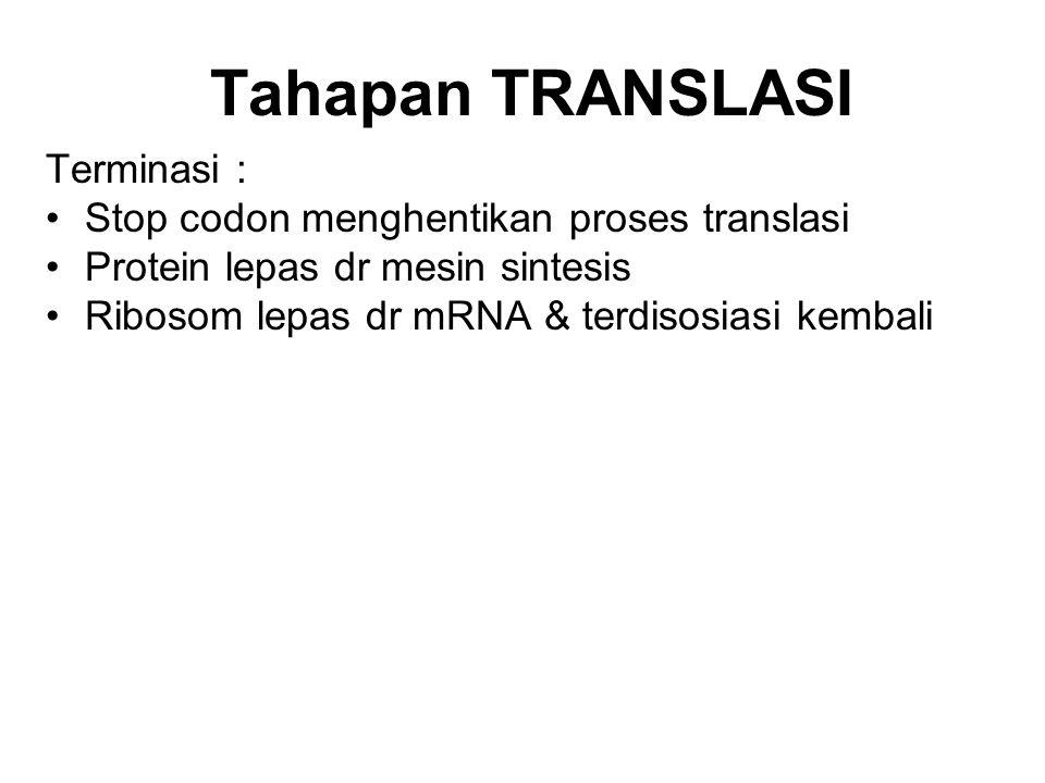 Tahapan TRANSLASI Terminasi : Stop codon menghentikan proses translasi Protein lepas dr mesin sintesis Ribosom lepas dr mRNA & terdisosiasi kembali