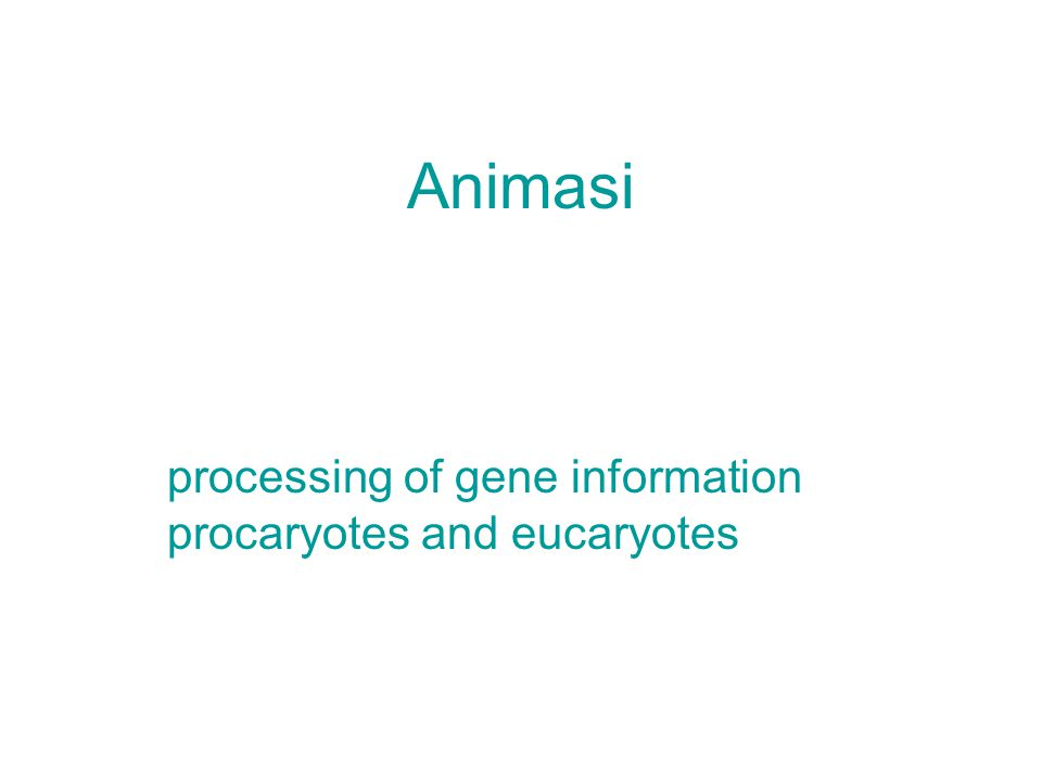 Animasi processing of gene information procaryotes and eucaryotes
