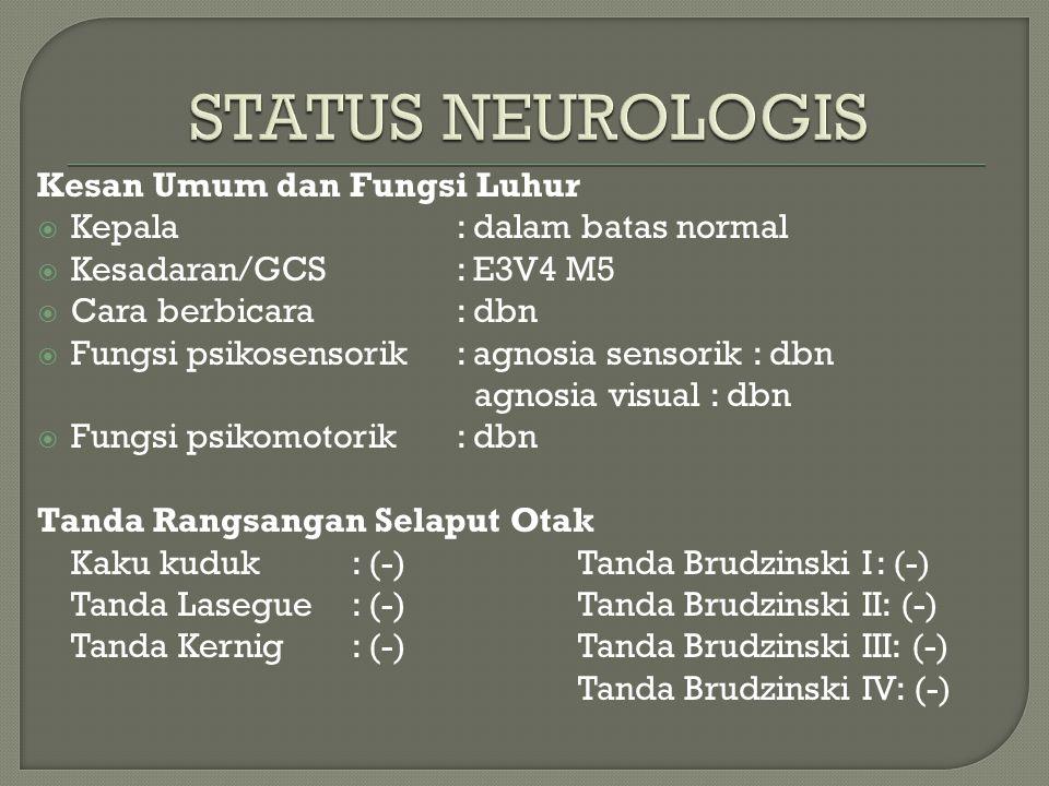 Kesan Umum dan Fungsi Luhur  Kepala: dalam batas normal  Kesadaran/GCS: E3V4 M5  Cara berbicara: dbn  Fungsi psikosensorik: agnosia sensorik : dbn