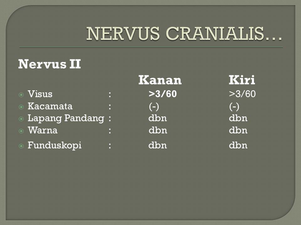 Nervus II KananKiri  Visus: >3/60>3/60  Kacamata: (-)(-)  Lapang Pandang : dbn dbn  Warna: dbndbn  Funduskopi: dbn dbn