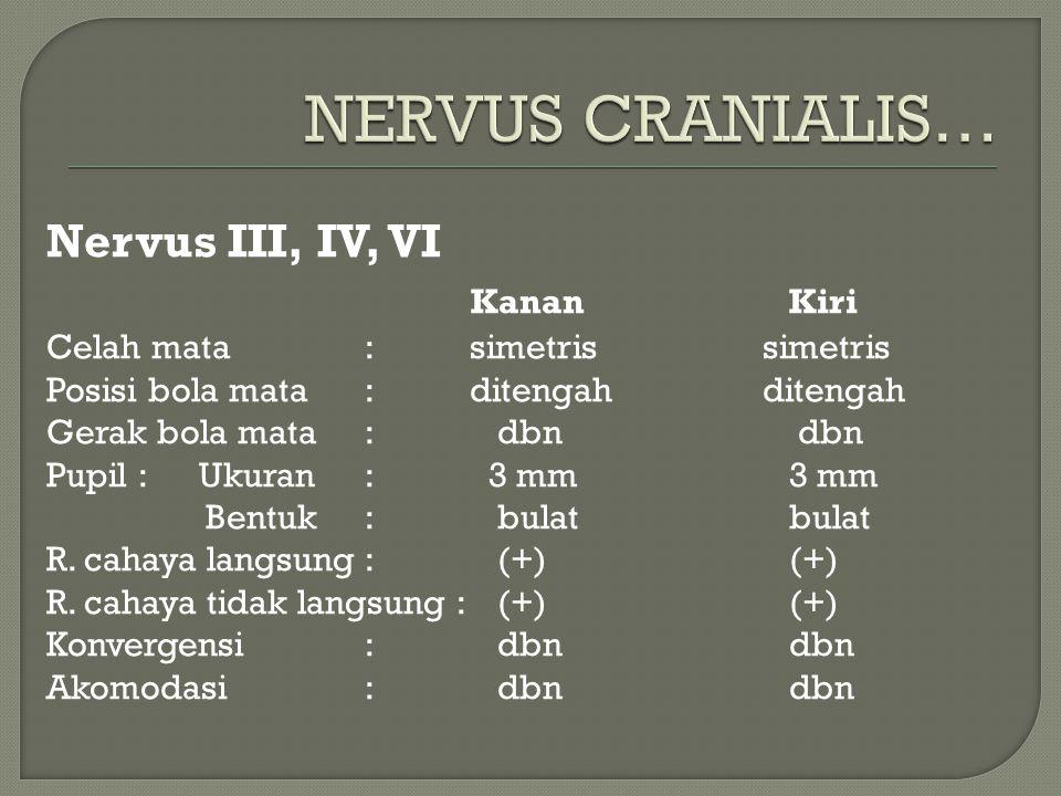 Nervus III, IV, VI KananKiri Celah mata: simetris simetris Posisi bola mata: ditengah ditengah Gerak bola mata: dbn dbn Pupil : Ukuran: 3 mm3 mm Bentu