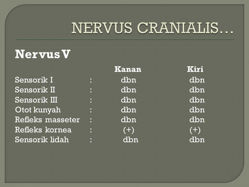 Nervus V Kanan Kiri Sensorik I: dbndbn Sensorik II: dbndbn Sensorik III: dbndbn Otot kunyah: dbndbn Refleks masseter: dbndbn Refleks kornea: (+)(+) Se