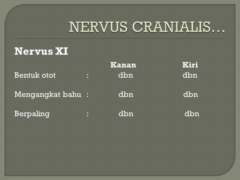 Nervus XI KananKiri Bentuk otot: dbn dbn Mengangkat bahu: dbn dbn Berpaling: dbn dbn