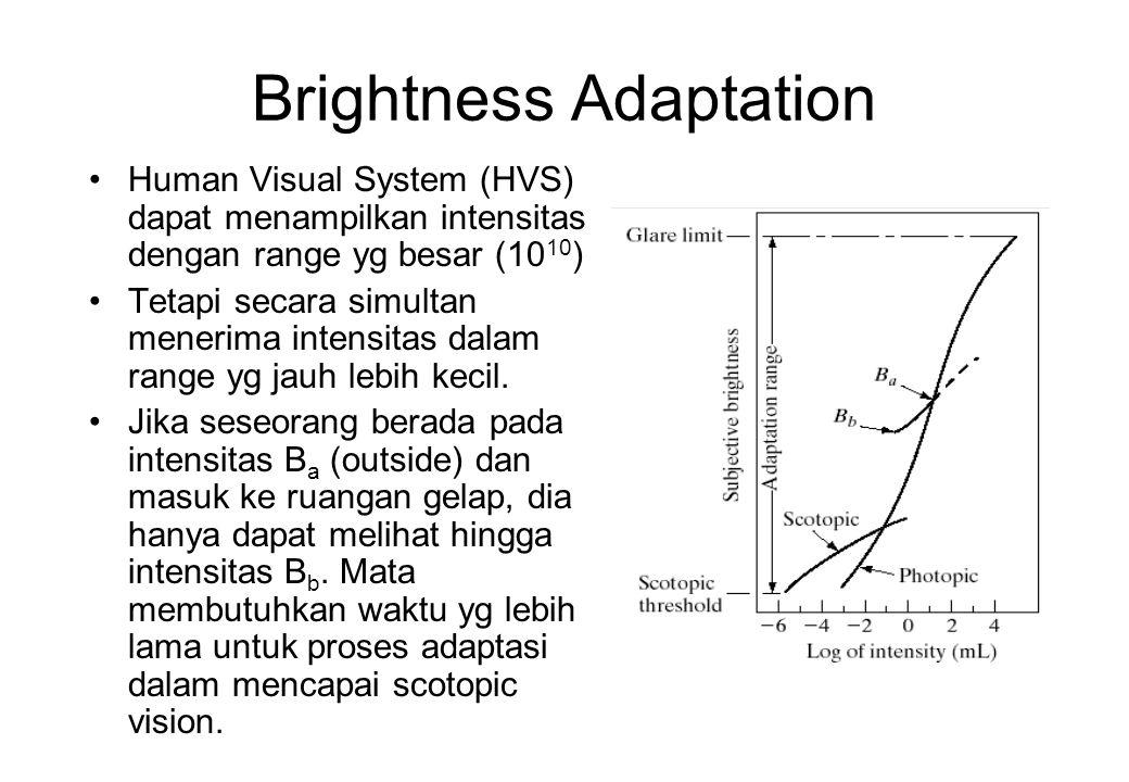 Sistem Visual Manusia Kepekaan dalam pembedaan tingkat kecemerlangan merupakan fungsi yang tidak sederhana, namun dapat dijelaskan antara lain dengan dua fenomena berikut: Mach Band (ditemukan oleh Ernst Mach): pita tengah bagian kiri kelihatan lebih terang dari bagian kanan.