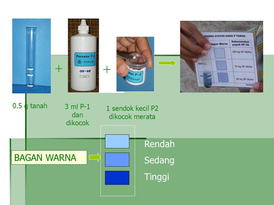 0.5 g tanah + + P-1P-2 3 ml P-1 dan dikocok Rendah Sedang Tinggi BAGAN WARNA + 1 sendok kecil P2 dikocok merata