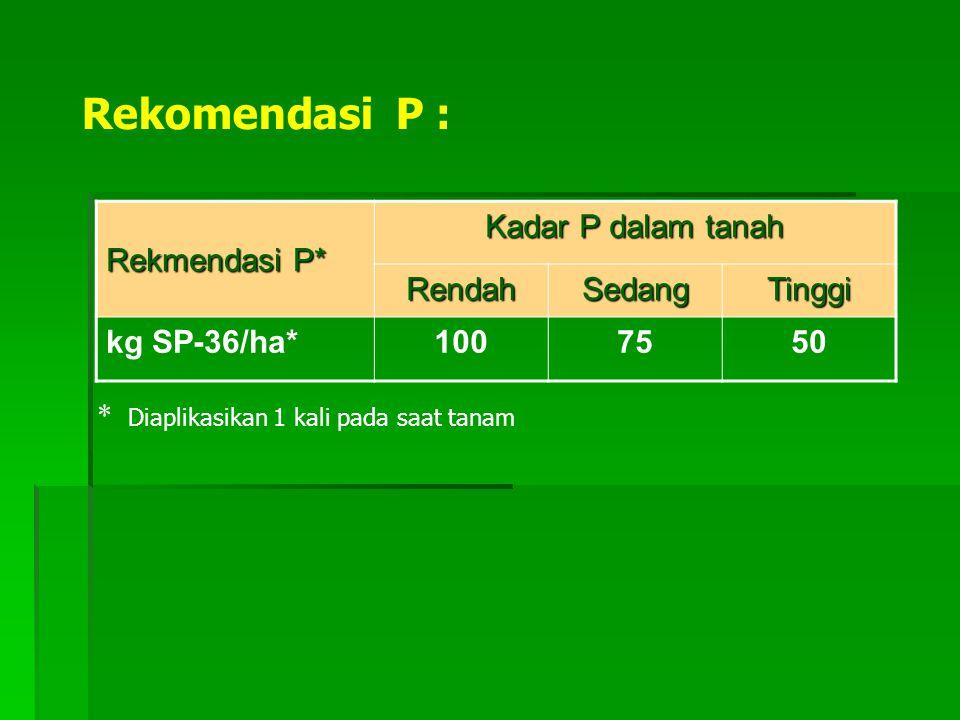 Rekomendasi P : Rekmendasi P* Kadar P dalam tanah RendahSedangTinggi kg SP-36/ha*1007550 * Diaplikasikan 1 kali pada saat tanam