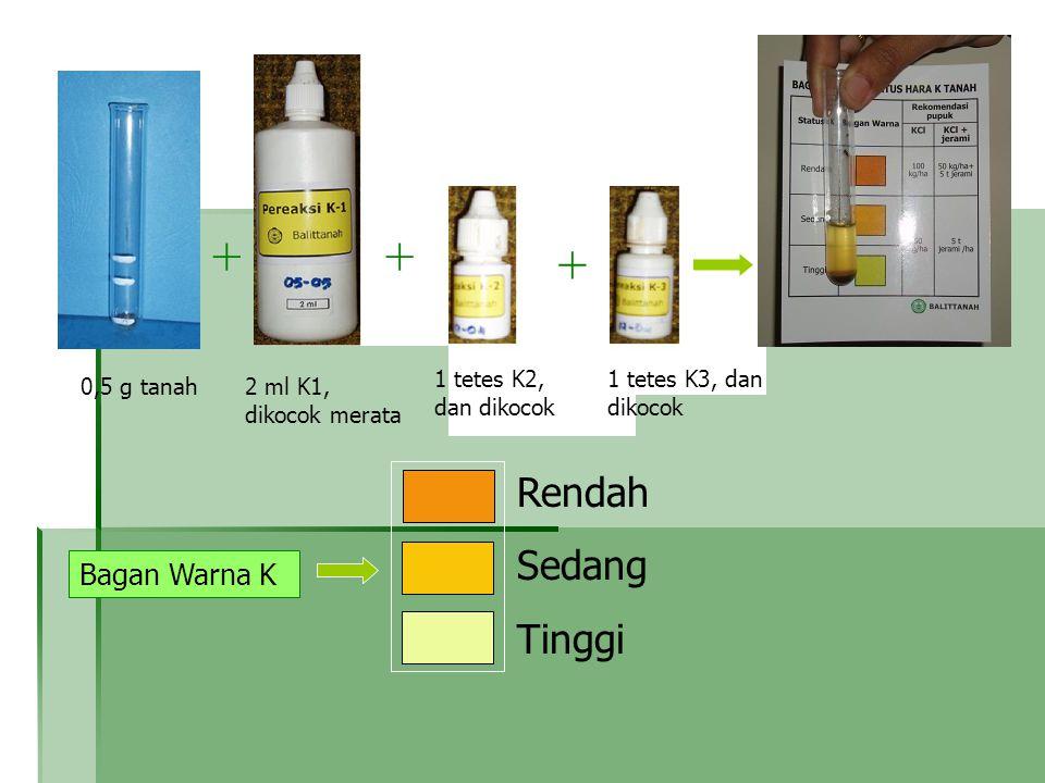 0,5 g tanah + + K-1K-2 2 ml K1, dikocok merata Rendah Sedang Tinggi Bagan Warna K K-3 + 1 tetes K2, dan dikocok + + 1 tetes K3, dan dikocok