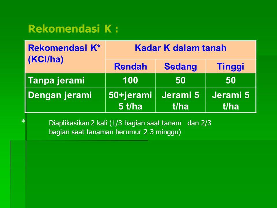 Rekomendasi K : Rekomendasi K* (KCl/ha) Kadar K dalam tanah RendahSedangTinggi Tanpa jerami10050 Dengan jerami50+jerami 5 t/ha Jerami 5 t/ha * Diaplikasikan 2 kali (1/3 bagian saat tanam dan 2/3 bagian saat tanaman berumur 2-3 minggu)