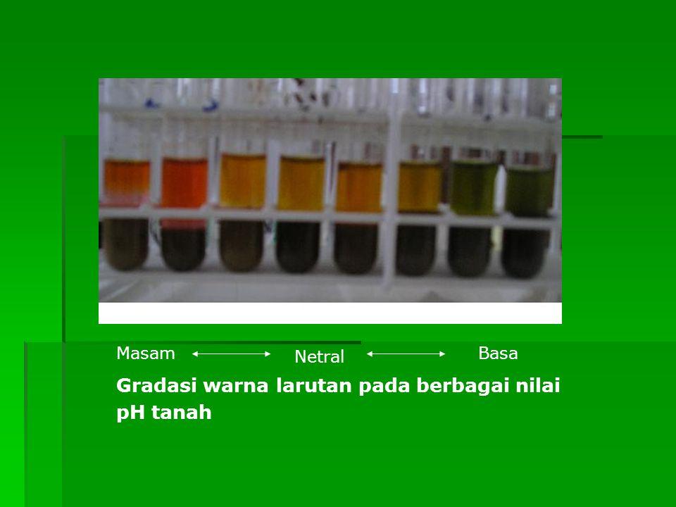 Gradasi warna larutan pada berbagai nilai pH tanah Masam Netral Basa