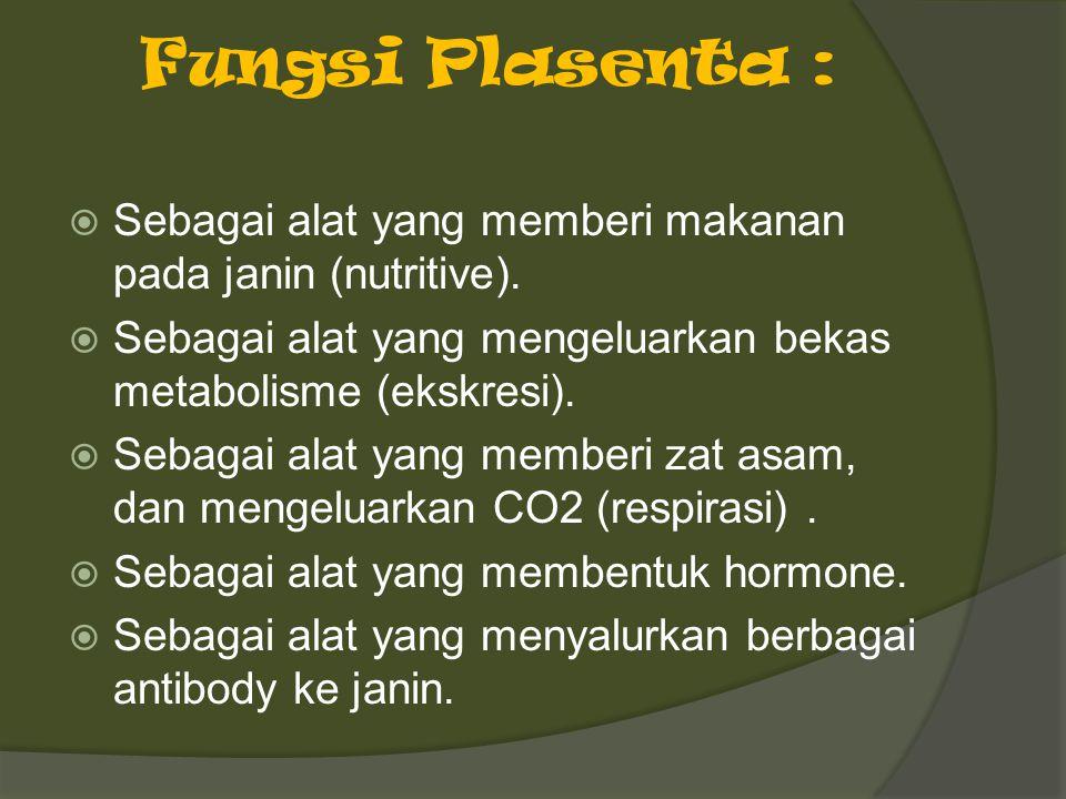 Fungsi Plasenta :  Sebagai alat yang memberi makanan pada janin (nutritive).