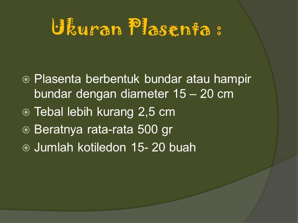 Ukuran Plasenta :  Plasenta berbentuk bundar atau hampir bundar dengan diameter 15 – 20 cm  Tebal lebih kurang 2,5 cm  Beratnya rata-rata 500 gr  Jumlah kotiledon 15- 20 buah