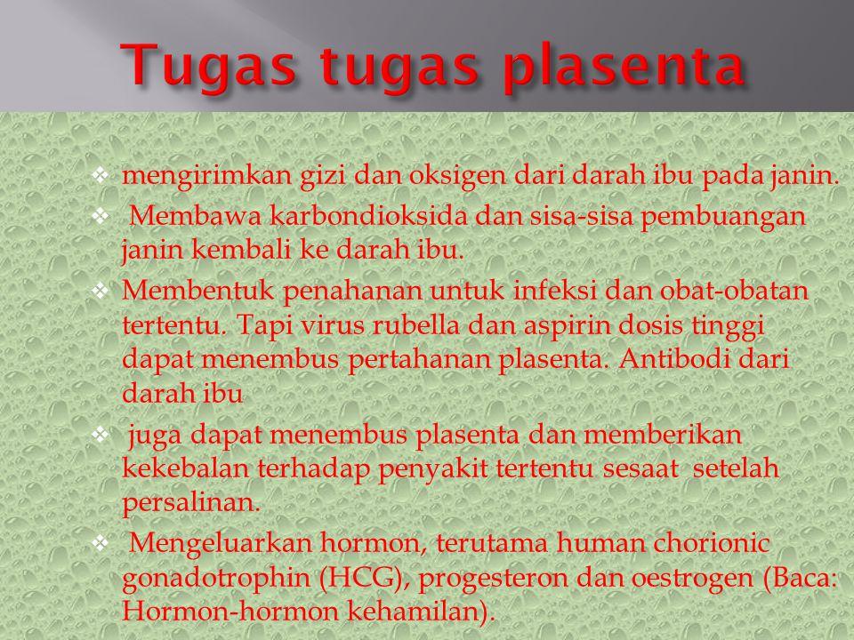  mengirimkan gizi dan oksigen dari darah ibu pada janin.