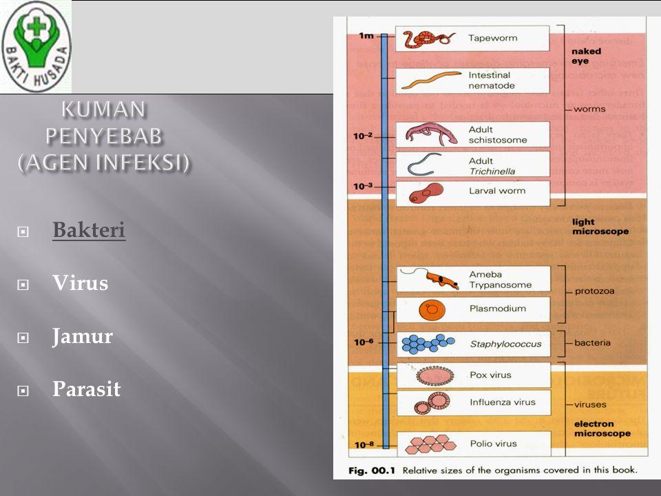 6 KUMAN PENYEBAB (AGEN INFEKSI)  Bakteri  Virus  Jamur  Parasit