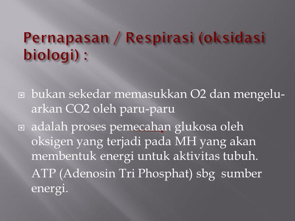  bukan sekedar memasukkan O2 dan mengelu- arkan CO2 oleh paru-paru  adalah proses pemecahan glukosa oleh oksigen yang terjadi pada MH yang akan memb