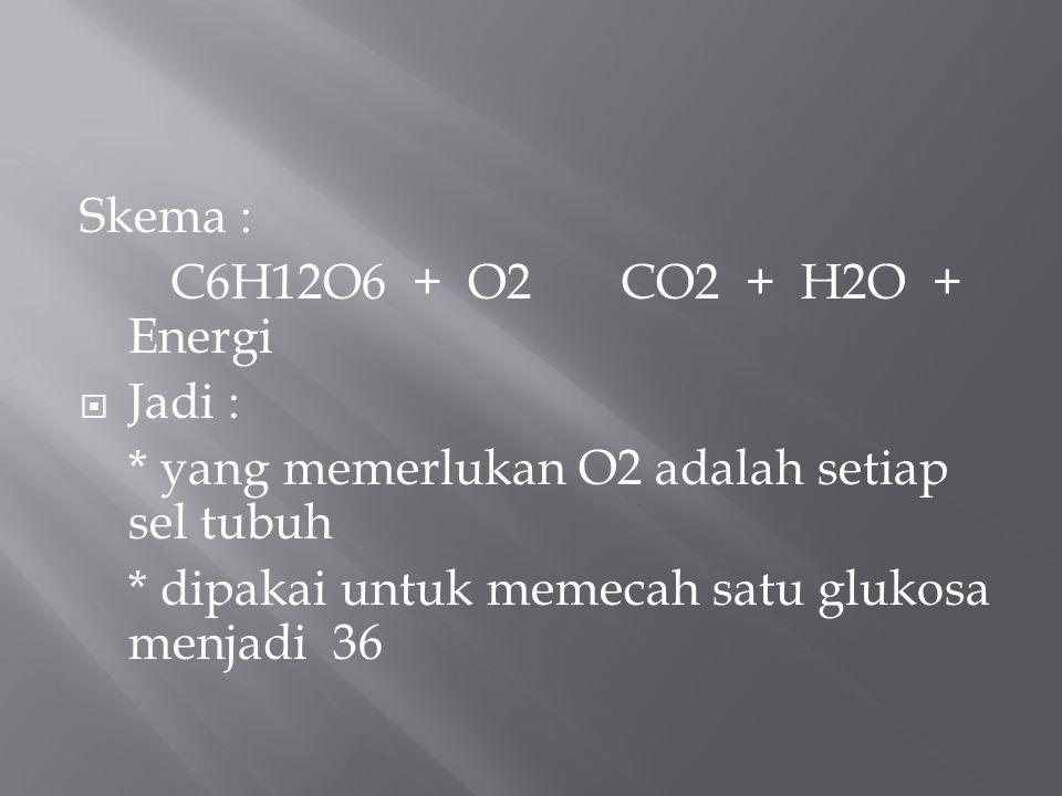 Skema : C6H12O6 + O2 CO2 + H2O + Energi  Jadi : * yang memerlukan O2 adalah setiap sel tubuh * dipakai untuk memecah satu glukosa menjadi 36