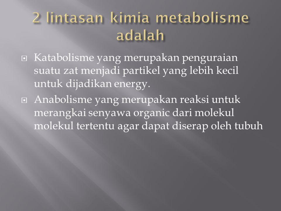  Katabolisme yang merupakan penguraian suatu zat menjadi partikel yang lebih kecil untuk dijadikan energy.  Anabolisme yang merupakan reaksi untuk m