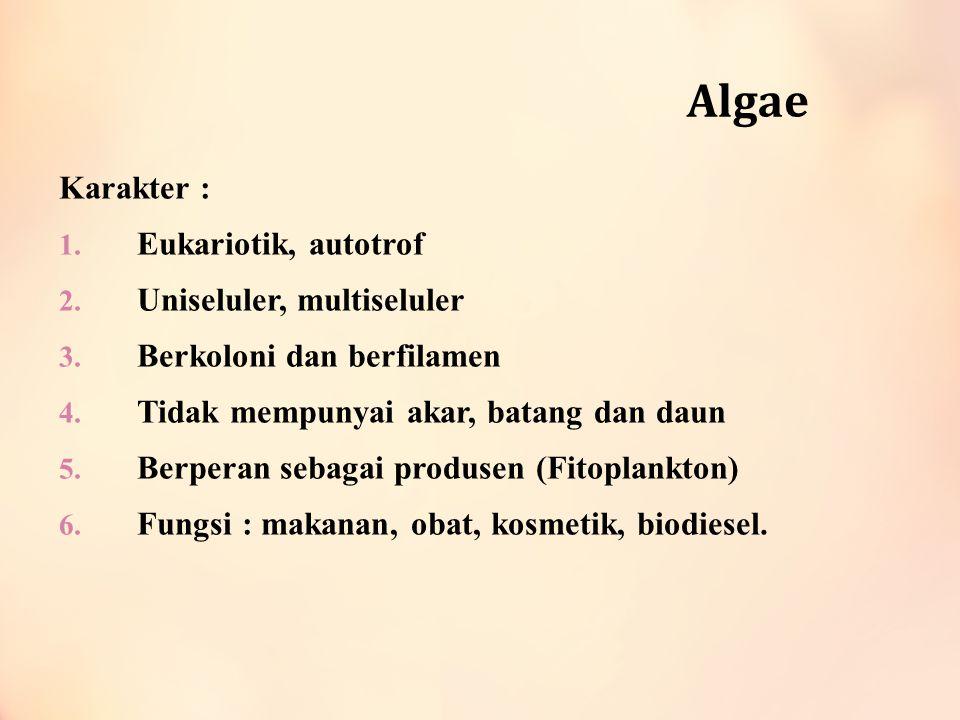 Algae Karakter : 1. Eukariotik, autotrof 2. Uniseluler, multiseluler 3. Berkoloni dan berfilamen 4. Tidak mempunyai akar, batang dan daun 5. Berperan