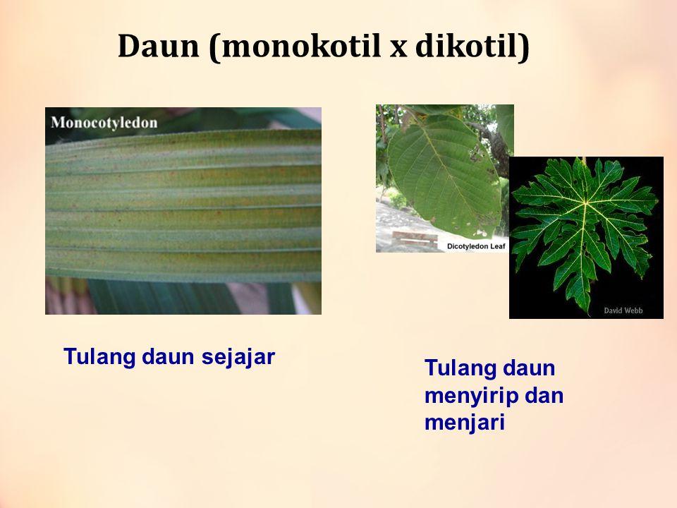 Jumlah kelopak bunga (monokotil vs dikotil ) Biasanya kelipatan 3Biasanya Kelipatan 5