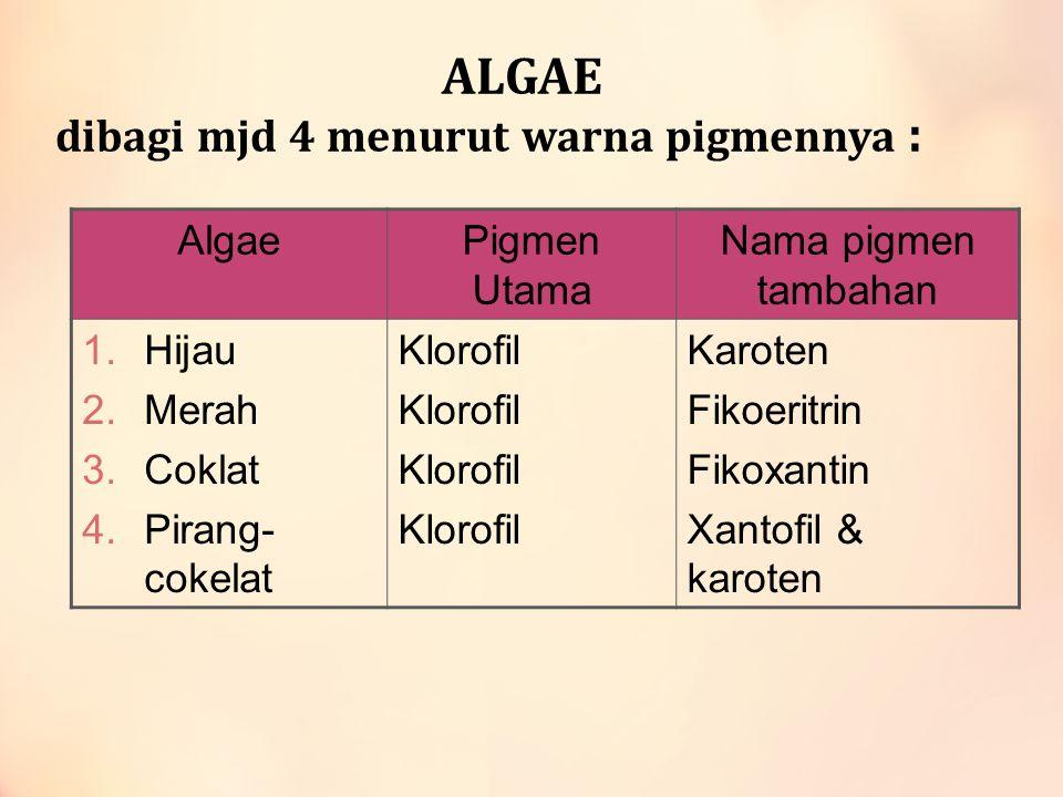 ALGAE dibagi mjd 4 menurut warna pigmennya : AlgaePigmen Utama Nama pigmen tambahan 1.Hijau 2.Merah 3.Coklat 4.Pirang- cokelat Klorofil Karoten Fikoer