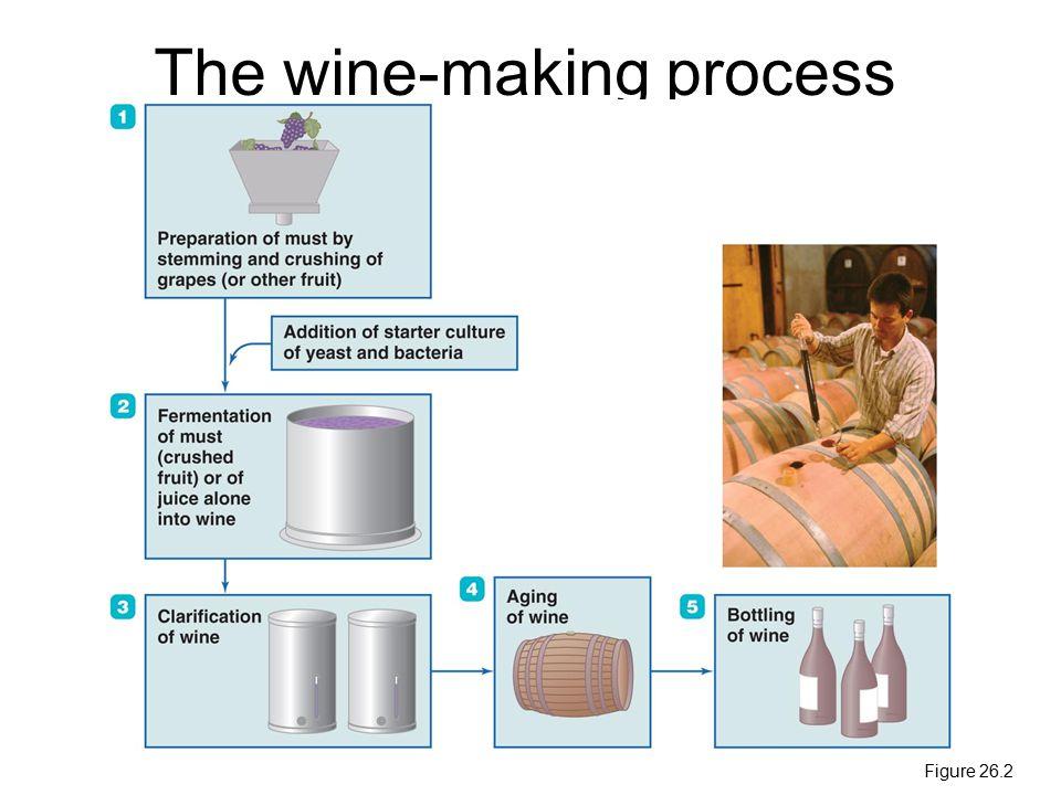 The wine-making process Figure 26.2