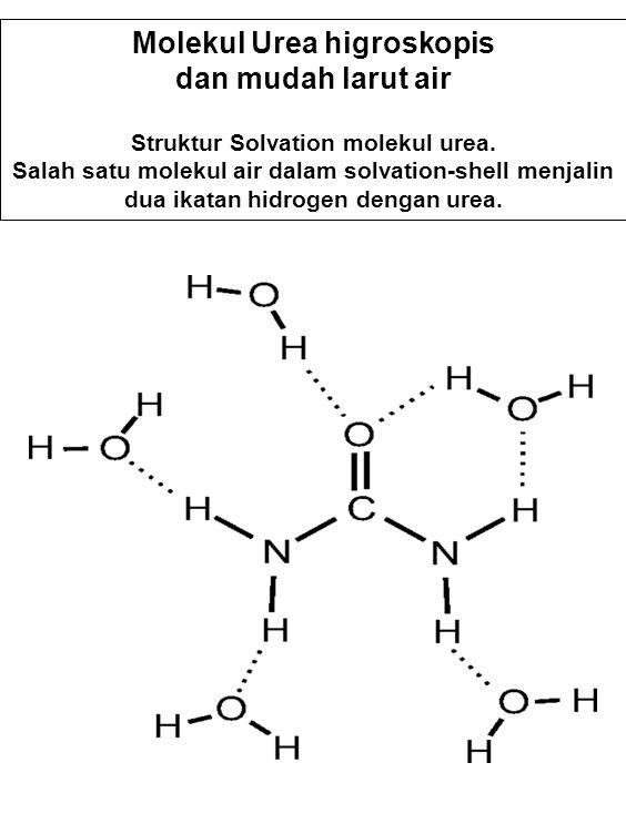 Molekul Urea higroskopis dan mudah larut air Struktur Solvation molekul urea. Salah satu molekul air dalam solvation-shell menjalin dua ikatan hidroge