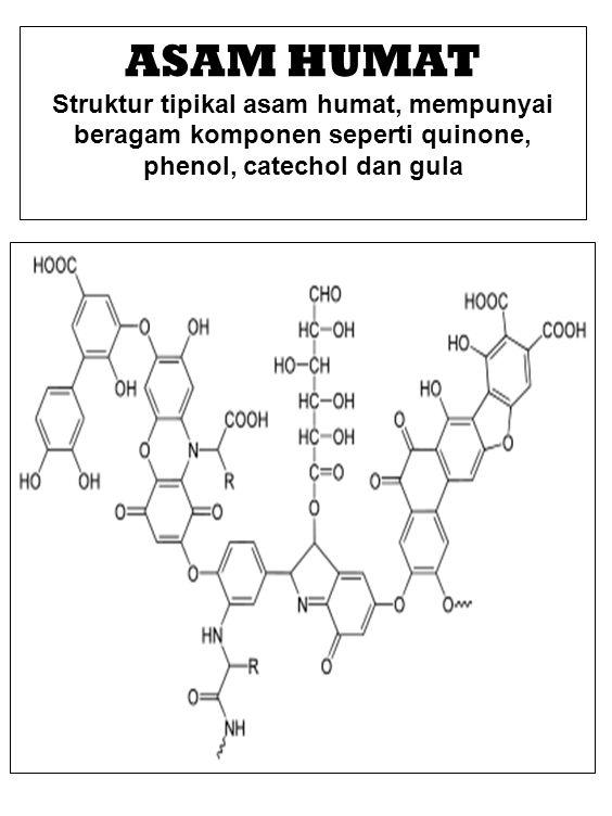 ASAM HUMAT Struktur tipikal asam humat, mempunyai beragam komponen seperti quinone, phenol, catechol dan gula