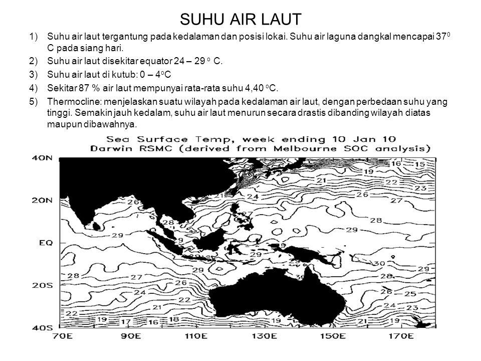 SUHU AIR LAUT 1)Suhu air laut tergantung pada kedalaman dan posisi lokai. Suhu air laguna dangkal mencapai 37 0 C pada siang hari. 2)Suhu air laut dis