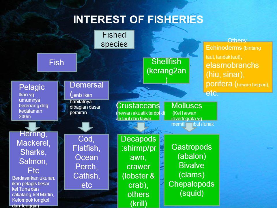 PELAGISDEMERSAL Kelompok Ikan yg berada pada lapisan permukaan hingga kolam air dan memiliki ciri khas utama selalu bergerombol (schooling) dan melakukan migrasi.