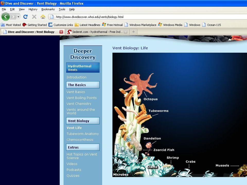 Intertidal Pelagic Abyssal Benthic