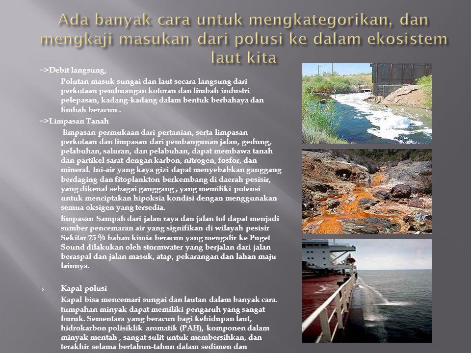 =>Debit langsung, Polutan masuk sungai dan laut secara langsung dari perkotaan pembuangan kotoran dan limbah industri pelepasan, kadang-kadang dalam bentuk berbahaya dan limbah beracun.
