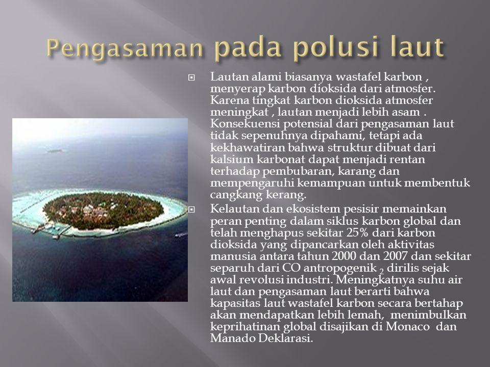  Lautan alami biasanya wastafel karbon, menyerap karbon dioksida dari atmosfer.