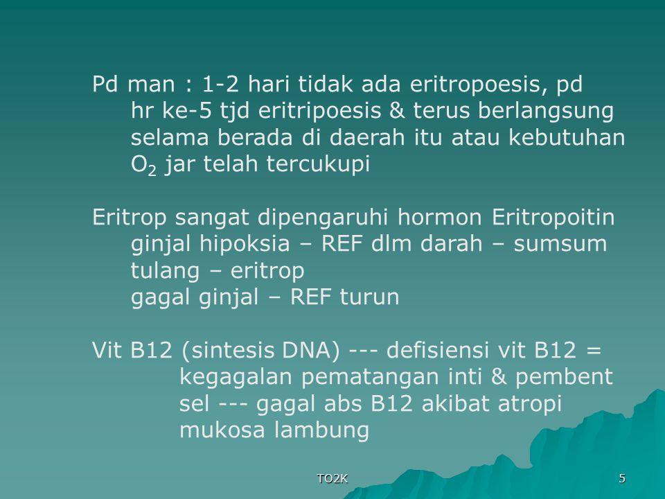 TO2K 5 Pd man : 1-2 hari tidak ada eritropoesis, pd hr ke-5 tjd eritripoesis & terus berlangsung selama berada di daerah itu atau kebutuhan O 2 jar te