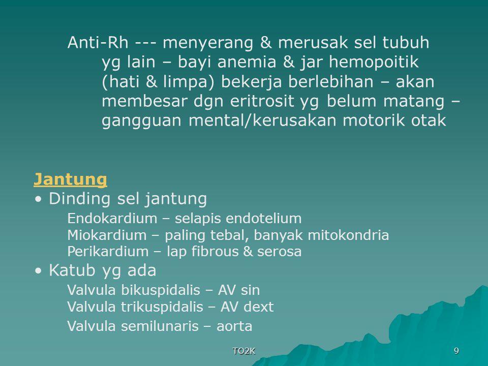 TO2K 9 Anti-Rh --- menyerang & merusak sel tubuh yg lain – bayi anemia & jar hemopoitik (hati & limpa) bekerja berlebihan – akan membesar dgn eritrosi