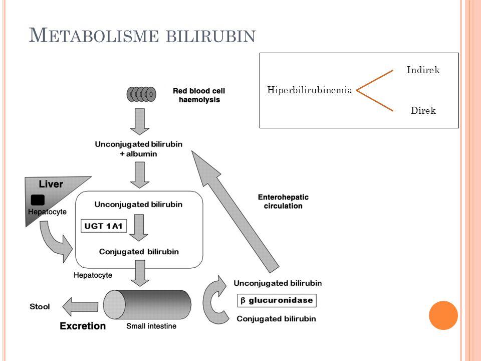 M ETABOLISME BILIRUBIN Hiperbilirubinemia Indirek Direk