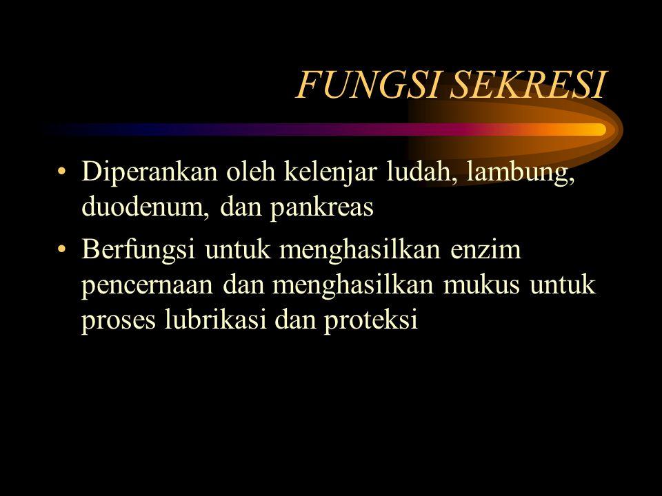 FUNGSI SEKRESI Diperankan oleh kelenjar ludah, lambung, duodenum, dan pankreas Berfungsi untuk menghasilkan enzim pencernaan dan menghasilkan mukus un