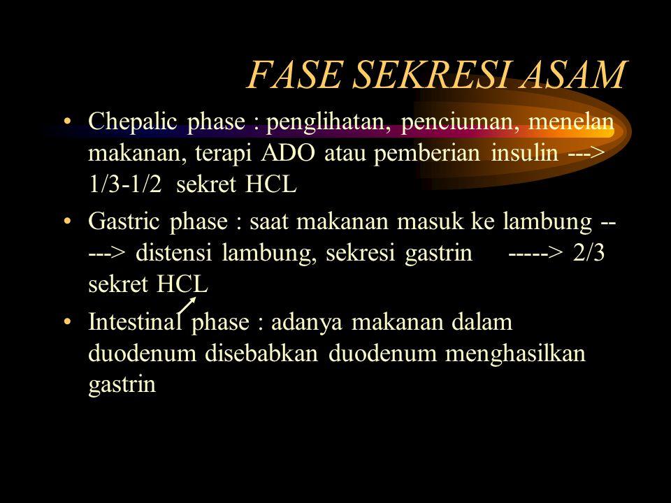 FASE SEKRESI ASAM Chepalic phase : penglihatan, penciuman, menelan makanan, terapi ADO atau pemberian insulin ---> 1/3-1/2 sekret HCL Gastric phase :
