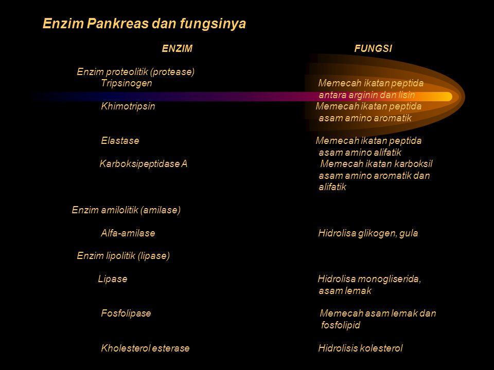 Enzim Pankreas dan fungsinya ENZIM FUNGSI Enzim proteolitik (protease) Tripsinogen Memecah ikatan peptida antara arginin dan lisin Khimotripsin Memeca