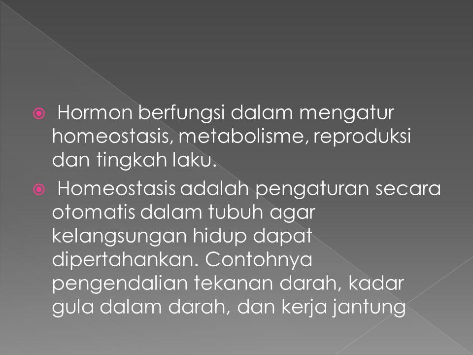  Hormon berfungsi dalam mengatur homeostasis, metabolisme, reproduksi dan tingkah laku.  Homeostasis adalah pengaturan secara otomatis dalam tubuh a